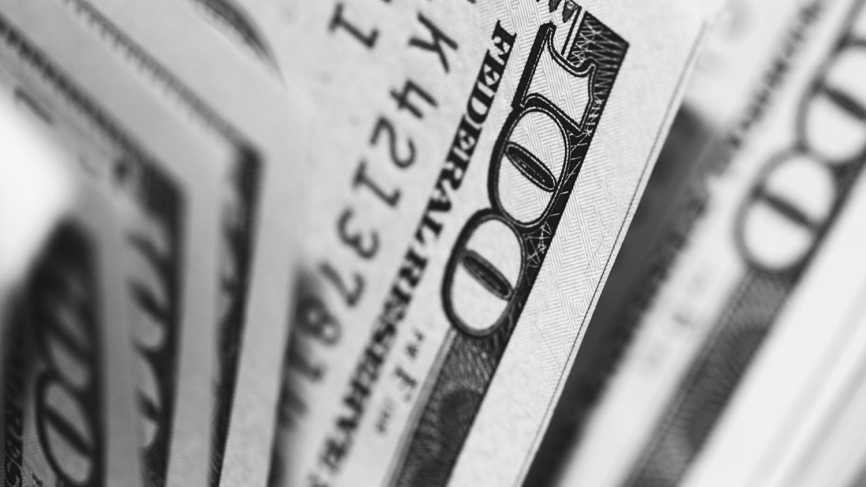 annual fund campaign - money